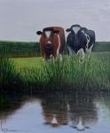 Koeien aan de sloot (olieverf)