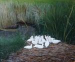 Groep witte kwakertjes (olieverf)